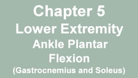 Thumbnail for entry MMT_ankle_plantarflexion