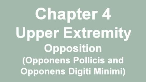 Thumbnail for entry MMT_finger-thumb_opposition