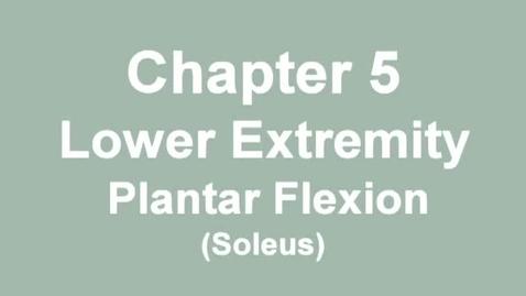 Thumbnail for entry MMT_ankle_plantarflexion_soleus