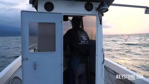 Kormorane: die Räuber der Fischer am Neuenburgersee