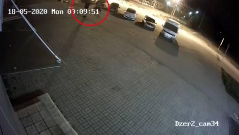 Mitten in russischer Grossstadt: Mann bei Spaziergang von Bär angegriffen