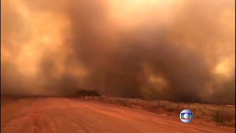 Die Lunge der Erde brennt: Verheerende Brände im Amazonas