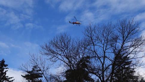 Mithilfe eines Helikopters: Holzen am Aarauer Hungerberg am 21. Januar 2021