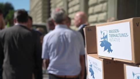 """Initiative """"Keine Massentierhaltung in der Schweiz"""" eingereicht"""