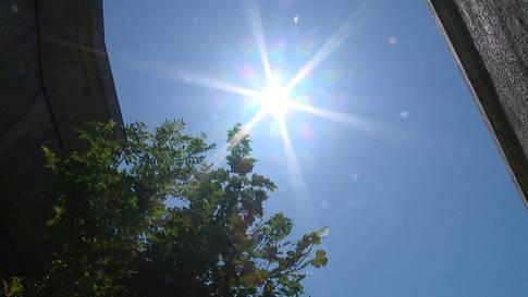 2. Hitzewelle überrollt die Schweiz