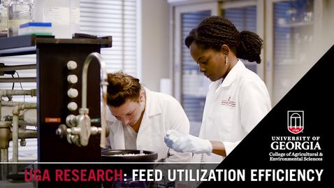 Thumbnail for entry Feed Utilization Efficiency | Sammey Aggrey
