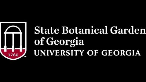 Thumbnail for entry Pollinator Basics