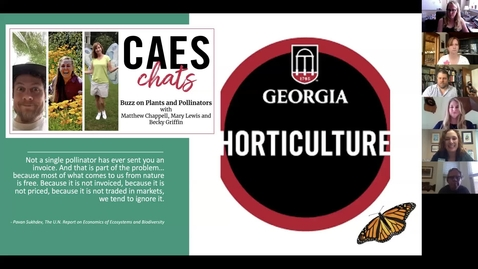 Thumbnail for entry CAES Chats - Buzz on Plants and Pollinators