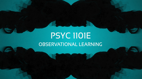 Thumbnail for entry Observational Learning