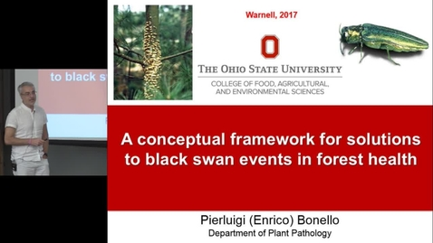 Thumbnail for entry Dr. Enrico Bonello