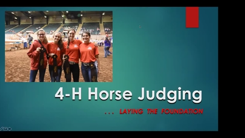 Thumbnail for entry 4-H Horse Judging.... Laying the Foundation!
