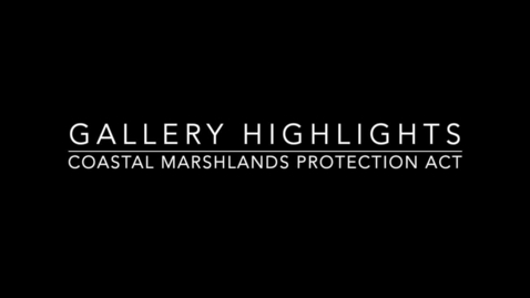 Thumbnail for entry Gallery Highlights: The Coastal Marshlands Protections Act
