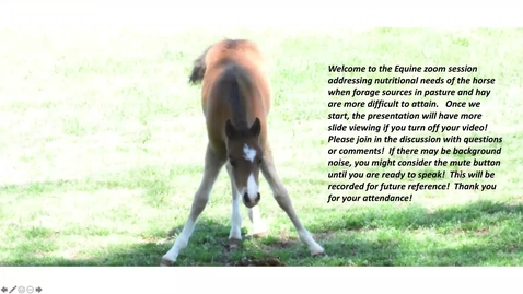 Thumbnail for entry Heading Off Body Condition Losses in Horses . . . Especially in the Winter Time!