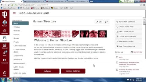 Thumbnail for entry TH, Human Structure, 8/23/16