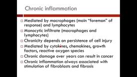Thumbnail for entry WL - FHD - 170117 - Kreisle - Chronic Inflammation