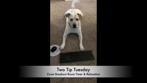Thumbnail for entry Tip Tuesday 23 - Zoom Breakout Room Timer & Meditation