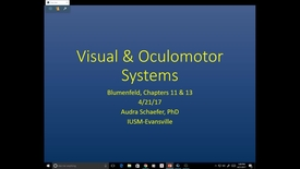 Thumbnail for entry Evv-N&B-Visual & Oculomotor Systems- 2017 Apr 21 03:11:55