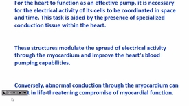 Thumbnail for entry Fort Wayne Cardiac Electrophysiolgy Part 2 1-23-17