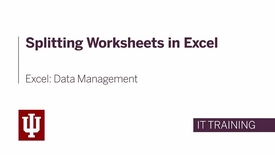 Thumbnail for entry Excel: Data Management - Splitting the Worksheet