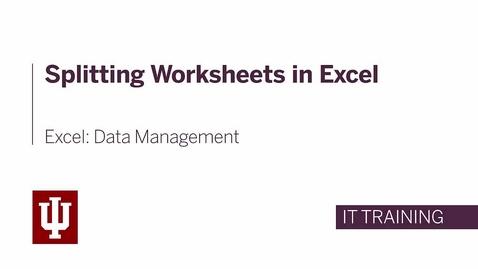 Thumbnail for entry Excel: Data Management - Splitting the Worksheet