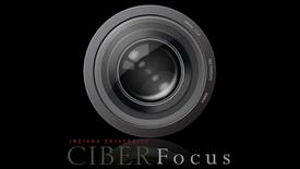 "Thumbnail for entry CIBER Focus: ""Turkey's Importance in Transatlantic Trade Relations"" with Kemal Kirisci"