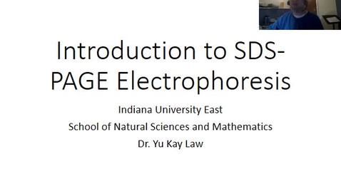 Thumbnail for entry Introduction to SDS-PAGE Electrophoresis