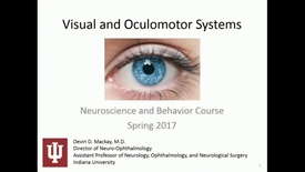 Thumbnail for entry IN NB 4/24/2017: Visual and Oculomotor Systems