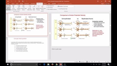 Thumbnail for entry 1-13-2017b_Synaptic transmission_kennedy_FHD SB