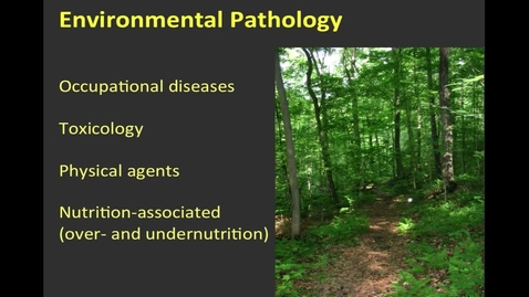 Thumbnail for entry Bloomington, FHD, 2/13/2017, Environmental Injury 1