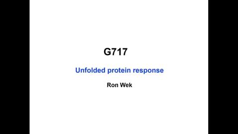 Thumbnail for entry Wek - 2017 Sep 11 01:56:58