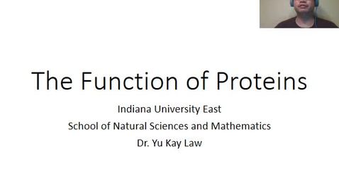 Thumbnail for entry Function of Proteins