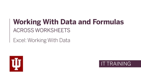 Thumbnail for entry Excel: Working with Data - Working with Data and Formulas Across Worksheets