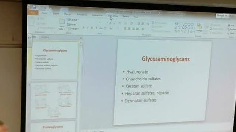 Thumbnail for entry Glycosaminoglycans and Sphingolipid Diseases