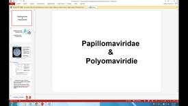 Thumbnail for entry WL - HD - 170306 - Mohammed - Papillomaviridae and Polyomaviridie