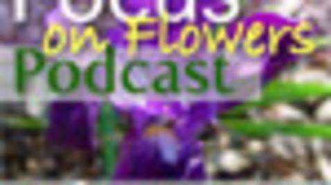 Thumbnail for entry Flower Trade