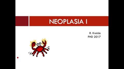 Thumbnail for entry WL - FHD Neoplasm I S17 Kreisle 170214