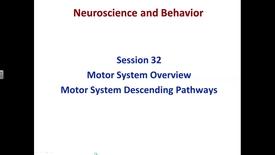 Thumbnail for entry S32. NW, N&B, motor pathways lec, Marfurt