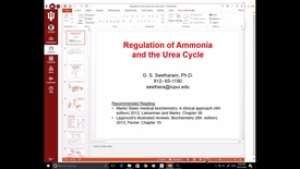Thumbnail for entry EVV, MCT, 10/31/2016: Regulation of Ammonia and Urea cycle - Ram