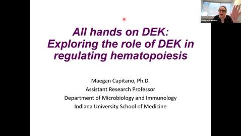 "Thumbnail for entry IUSCCC Virtual Seminar Series, July 2, 2020 - Meagan Capitano, PhD - ""All hands on DEK: exploring the role of DEK in regulating hematopoiesis"""