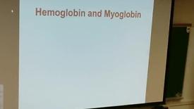 Thumbnail for entry Hemoglobin Hemoglinopathies