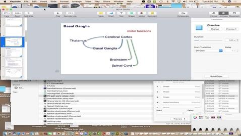 Thumbnail for entry BL X660 Basal Ganglia 1  4/25
