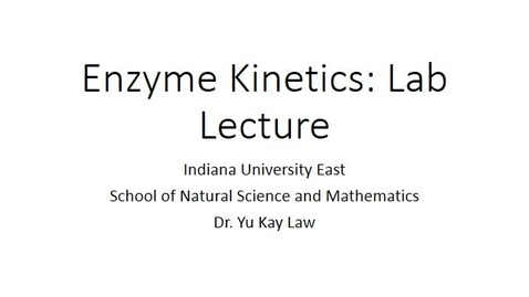 Thumbnail for entry Enzyme Kinetics: Lab Lecture