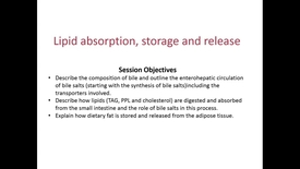 Thumbnail for entry WL - MCT - 161102 - Forney - Fat Absorption Storage and Lipolysis