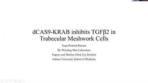 Thumbnail for entry dCAS9-KRAB inhibits TGFβ2 in trabecular meshwork cells