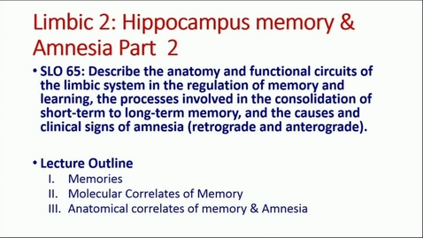 Thumbnail for entry IN NB 5/2/2017: Limbic System-Hippocampus; Memory and Learning; Amnesia; Chemical Neuroanatomy in Mood Disorders