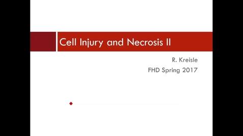 Thumbnail for entry WL - FHD - 170112 - Kreisle - Cell Injury and Necrosis