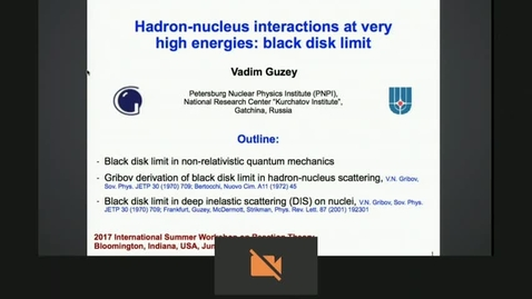Thumbnail for entry Hadron-nucleus interactions at very high energies: black disk limit by Vadim