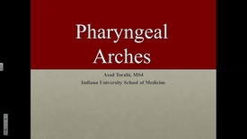 Thumbnail for entry Northwest - Pharyngeal Arches 11-15-16