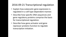 Thumbnail for entry WL | MCT | 160921 | Leung | Transcriptional Regulation