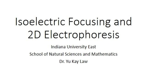 Thumbnail for entry Isoelectric Focusing and 2D-Electrophoresis